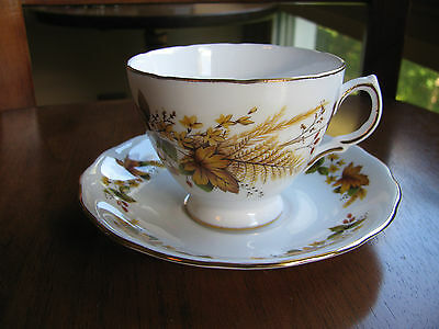 Ridgway Potteries Royal Vale White Bone China Teacup &  Saucer #8219 Fall Leaves