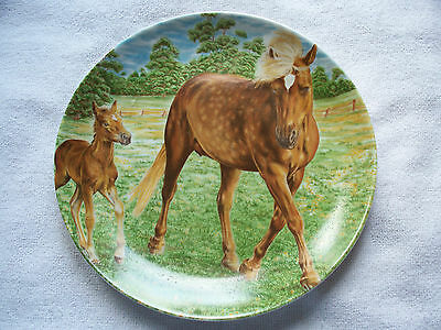 Kaiser West Germany Haflinger Mare And Foal Horse Collector Plate