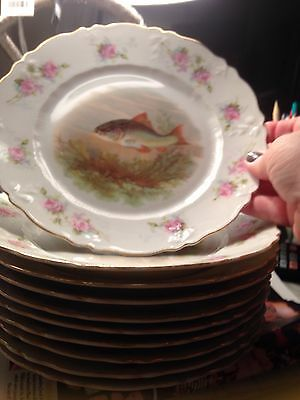 Rare 10 Plates Circa 1845-1870 By Carl Tielsch Germany. Fishes And Roses  8.5 In