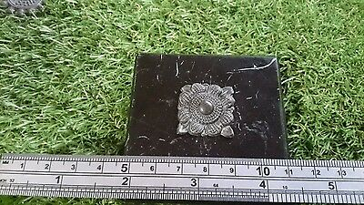 Roman Bronze/Silver? intricate flower casket mount found near York Yorkshire Uk