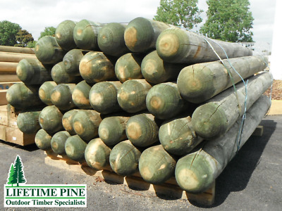 Treated Pine Bollards ~125mm Round Posts Approx 1.8m Length H4 Poles