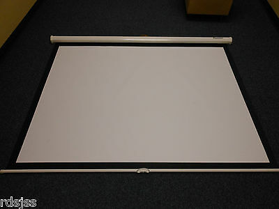 Panoview Projector Screen Preowned Nice Shape Ready To Use