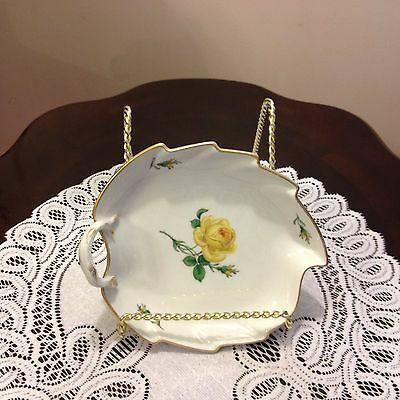 Beautiful plate, Yellow rose of Texas