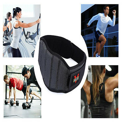 Weight Lifting Squat Belt Gym Fitness Training Back Support Body Building