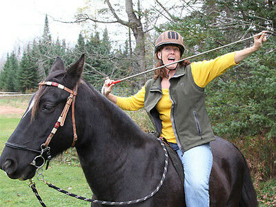 Slick Stick 4' Extentable Horse Training Stick Fits Parelli with FREE FLAG  WOW!