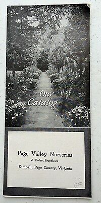 VINTAGE 1910s FLOWER & BULBS NURSERY CATALOG KIMBALL PAGE VALLEY COUNTY VIRGINIA
