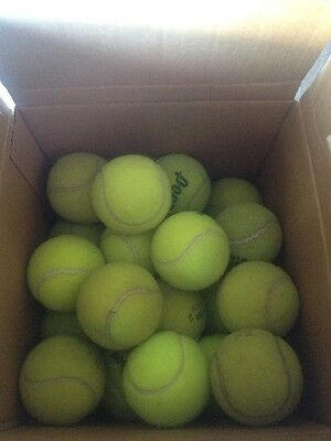 Tennis Balls-ONE HUNDRED/100 USED for Beyond Court Use $49.99 w/free S&H