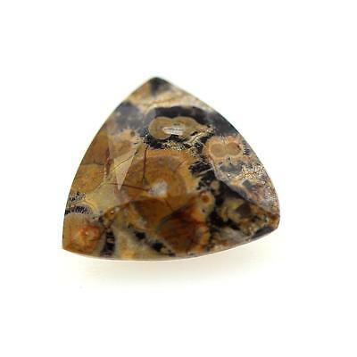 JASPER MULTICOLORED 1.55 cts . Africa