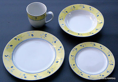 BLUEBERRY by ROYAL DOULTON ~ 4 PIECE PLACE SETTING  ~ MICROWAVE