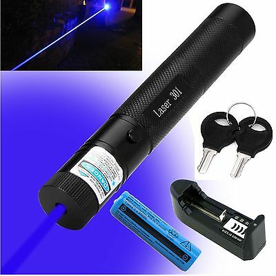 Blue Purple Laser Pointer Pen 301 High Powered Violet Laser battery +charger 1MW
