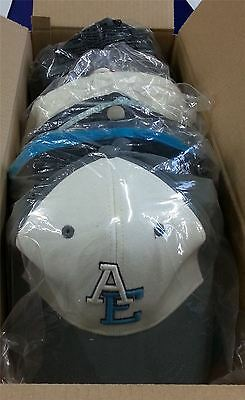 BLACK FRIDAY SPECIAL American Eagle 12 Pack Adult Baseball Caps Set 10