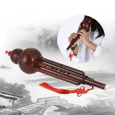 Hot Hulusi Resin Cucurbit Flute Ethnic with Case Key of C Handmade Gift UK M3Y1