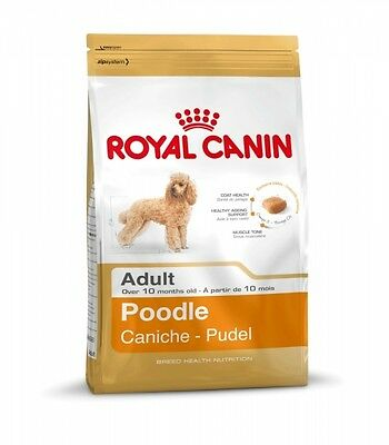 Royal Canin Pudel Adult 1,5kg