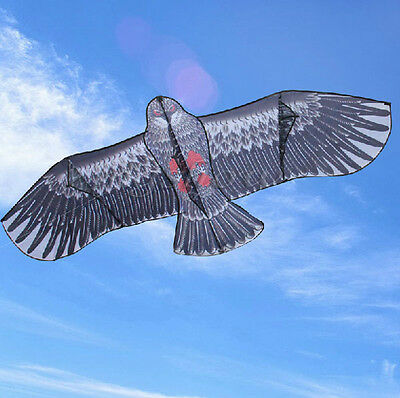 3D 170*80cm Large Hawk Eagle Kite Bird Scarer Outdoor Family Toy Hobby Kid Fun
