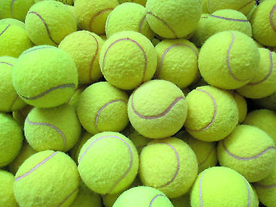 25 Used Tennis Balls For Dogs-Machine-Washed