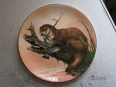 wedgwood bone china collectors plate called otter at dawn.