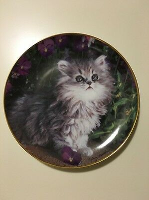 """""""PURRFECTION"""" Persian kitten Collector plate by Franklin Mint"""