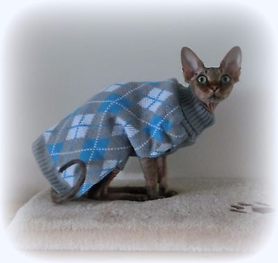 older kitten Warm winter top for a Sphynx  - cat clothes, sweater, Nacktkatze