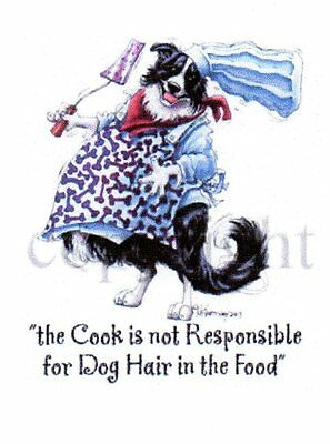 Tea Towel (Fat Chef) Border Collie by Mike McCartney