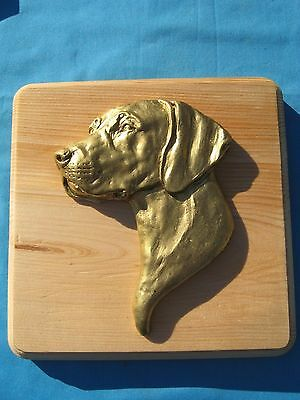 Vizsla 3D Head Study Square Wall Plaque by Dannyquest