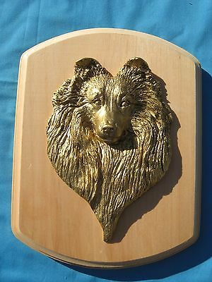 Shetland Sheepdog Sheltie 3D Head Study Rectangular Wall Plaque by Dannyquest