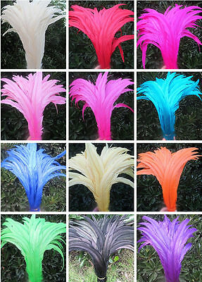 wholesale beautiful rooster tail feathers 12-14 inches / 30-35 cm