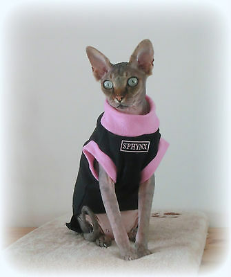 kitten SPHYNX, fleece top for a Sphynx cat clothes HOTSPHYNX Sfinks Katze