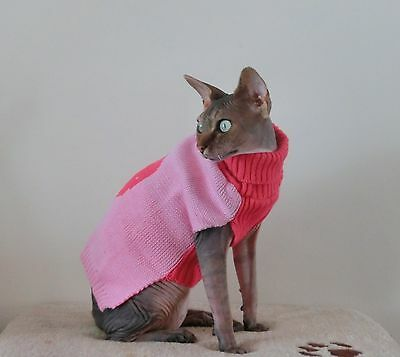 WINTER STRAWBERRY cat jumper for a Sphynx  cat, clothes, pet clothes, cat outfit
