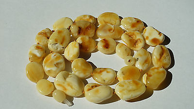 ANTIQUE BALTIC SEA AMBER NECKLACE 24.74GRAMS,BEESWAX,White COLOR.古董波罗的海琥珀项链