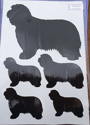 Bearded Collie/Beardie stickers