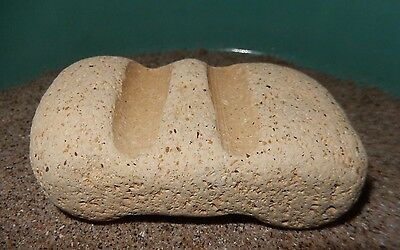Milwaukee Cream City Brick Paperweight~Surf Tumbled~Lake Michigan~#2~Free Ship!