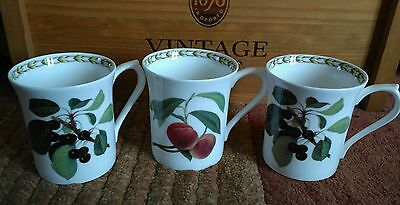 Vintage Queens Collection R H S Hookers Fruit China Mugs Cups Horticultural