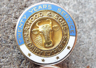 Vintage Dairy Pin Tac H P Hood And Sons Dairy Express 20 Years Service Ster Gf