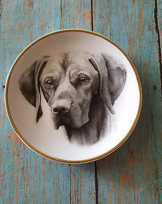 POINTER German Short Haired Mini Collector Plate / Dog Gift Swag