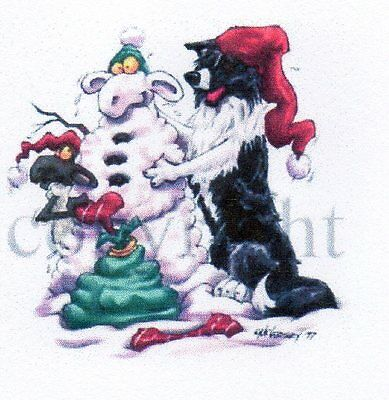 Border CCollie Christmas Card by Mike McCartney