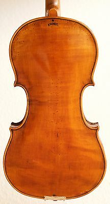old violin 4/4 geige viola cello fiddle label JACOBUS STAINER