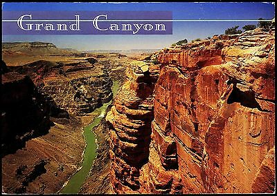 Splendid View - Grand Canyon National Park Usa Posted