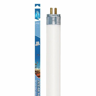 Arcadia Classica Moonlight T5 8W 300mm Clair de lune éclairage Tube Lampe • EUR 10,20