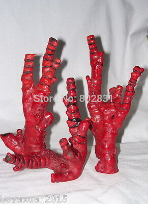 Wholesale 4 Natural Blood Red Coral Branch 5-7''
