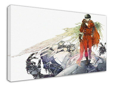 WK-C002 (505) Akira Canvas Stretched Wood Framed 36x24inch Poster