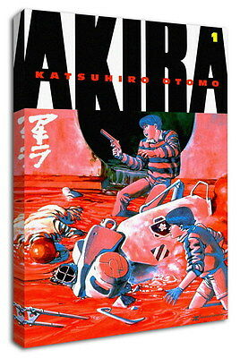 WK-C002 (502) Akira Canvas Stretched Wood Framed 36x24inch Poster