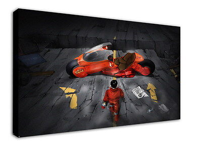 WK-C002 (513) Akira Canvas Stretched Wood Framed 36x24inch Poster
