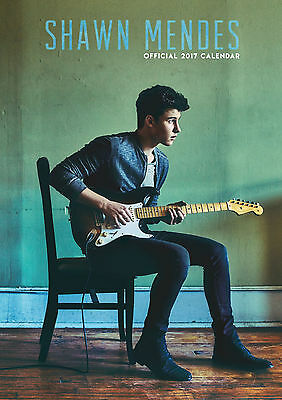 Shawn Mendes Official 2017 A3 Wall Calendar Brand New 9781785492648