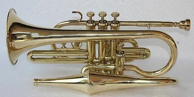 Royalchoice  4 Valve Brass Echo Cornet Brass Finish W/Case Gold