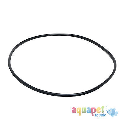 Fluval 305/405 External Filter Motor Seal Ring