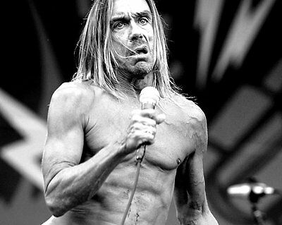 The Stooges Iggy Pop Glossy 8x10 Photo 6