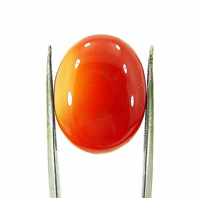 25.00 Ct Beautiful Natural Cabochon Orange Carnelian Gemstone Stone - 8646