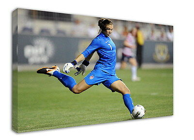 WK-F418 (507) Hope Solo Canvas Stretched Wood Framed 36x24inch Poster