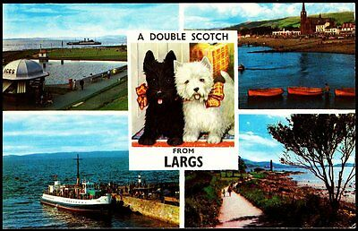 A Double Scotch Novelty 4 View Card From Largs Plc3776