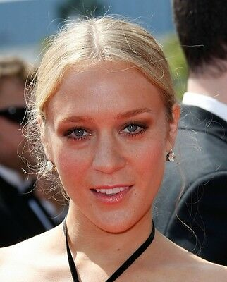 Chloe Sevigny 1,000 Picture Collection Vol 1 DVD (Photo/Images Disc)